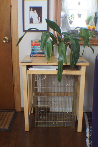 Curb sale table and birdcage