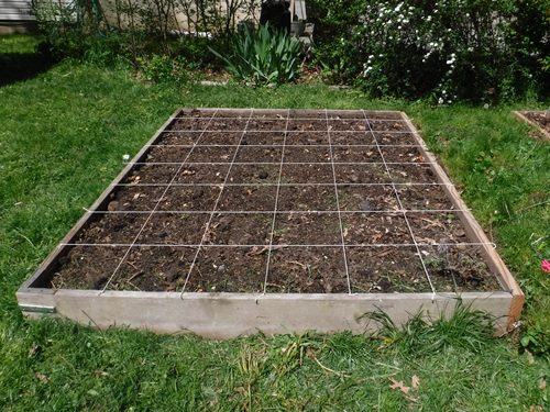 Creating a square foot grid in our raised bed garden