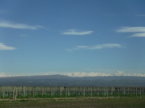 Andes Mountains in Mendoza Argentina