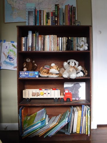 Unorganized Bookshelf