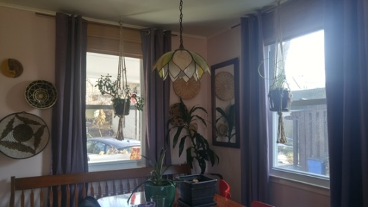 New curtains in the dining room